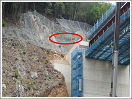 滝頭トンネル 現場見学会