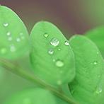 土壌環境関連事業