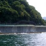 大分10号 高崎山地区道路改良の写真