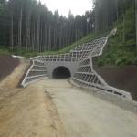 (仮称)大沢トンネルの写真